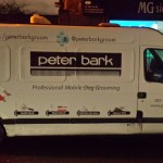 van signwriting & printed images